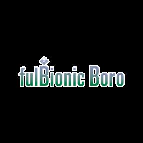 FULBIONIC BORO